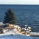 Bilde fra Larsmont Cottages on Lake Superior