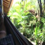 One of the many hammocks in the tropical courtyard.