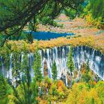 Tour Jiuzhaigou - Day Tour