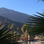 The Curve Palm Springs Hotel resmi