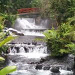 Photo of Tabacon Grand Spa Thermal Resort