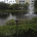 Foto de Sheraton Vistana Resort - Lake Buena Vista