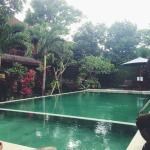 Foto Ubud View Bungalows