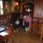 The Black Horse Inn resmi