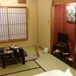 Very nice and large room in Japanese style