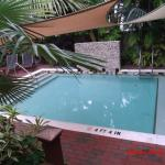 Foto de Travelers Palm Inn