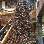 Beautiful Christmas tree at the River Lodge