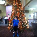 Beautiful Christmas tree at Stone Hill