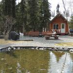 Photo de A Cabin by the Pond