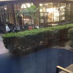 Pool was being repaired/cleaned but would be optimal patio if needed easy access...room 163
