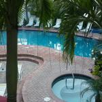 Pool from de room