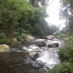 Gede's Secret Waterfall
