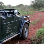 White Elephant Safari Lodge Foto