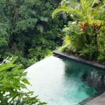 Photo de Bidadari Private Villas & Retreat - Ubud