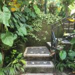 stairs down to cottage