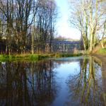 Relective mill ponds in beautiful woodlands setting - the grounds make for fabulous views and lo