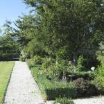 The lovely garden which guests are free to use.