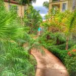 The walk to the pool, Dolphin Bay