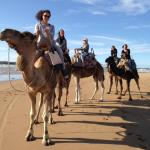 Beach and camel rides