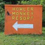 Photo de Howler Monkey Lodge