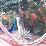 Plenty of hammocks for that true Mexican feel with the nice breeze rocking you to total relaxati