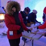 Ice carving activity