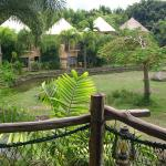 Φωτογραφία: Mara River Safari Lodge