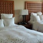 Standard room: comfortable and spacious