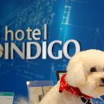 Hotel Indigo Columbus Downtown Foto