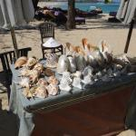 shell seller at the beach