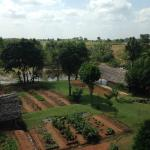 Kitchen Garden and grounds