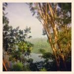 Morning view from the safari tent