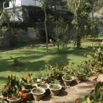 Bilde fra Green View Home Stay