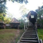 Foto de Muyuna Amazon Lodge