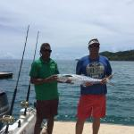 Boat trip caught great fish just off back off the boat on way home from dolphin safari