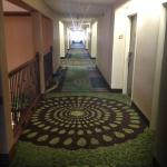 Φωτογραφία: Auburn Place Hotels and Suites