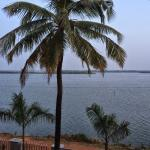 Backwaters view