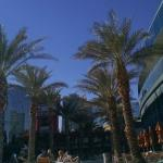 Foto de Elara, a Hilton Grand Vacations Club - Center Strip