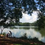 Lago do Parque Ibirapuera
