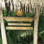 Finca Exotica welcomes you!