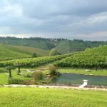Corte D'Aibo - view over bio-lake and vinyards