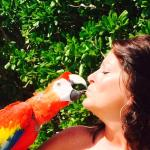 Loved meeting this feathered friend!