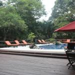 Foto di Jungle Lodge