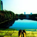 Relax at the roof top pool