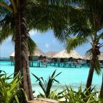 gorgeous overwater bungalows