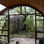 Looking out to the bush from the main room
