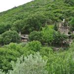Photo de Milia Mountain Retreat
