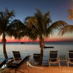 Marriott Key Largo Bay Beach Resort Foto