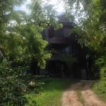 View of the Bed & Breakfast from the road