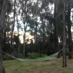 I love the area with the 'willows' and hammocks, very tranquil